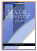 Bible Commentary Vol 6
