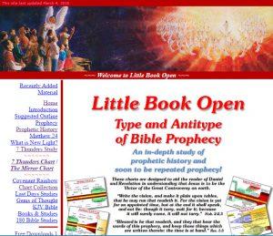 Little Book Open